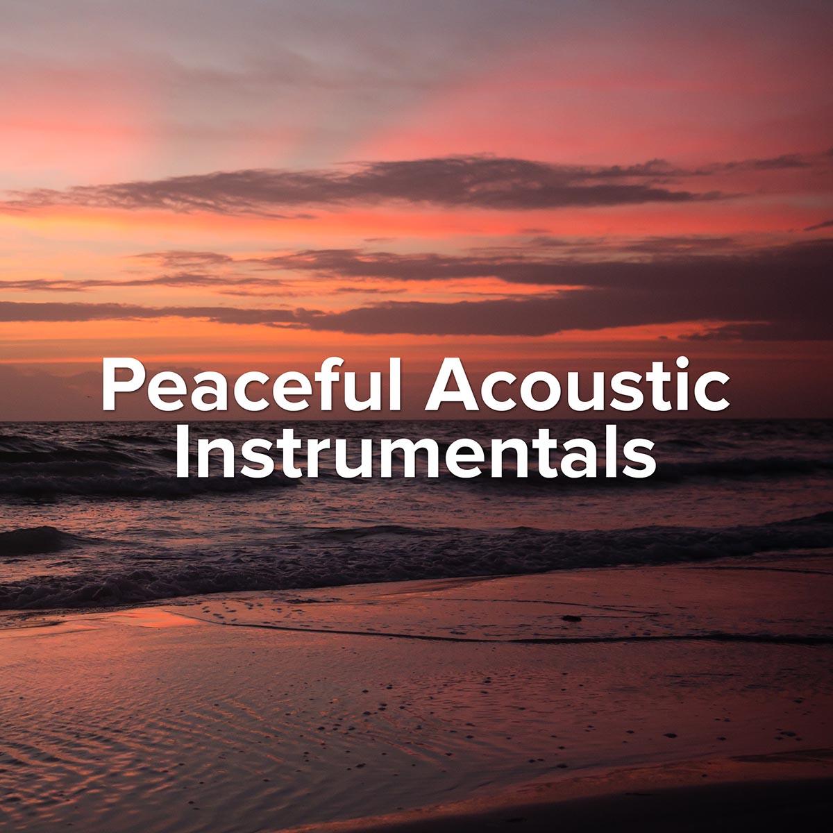 Peaceful Acoustic Instrumentals Playlist