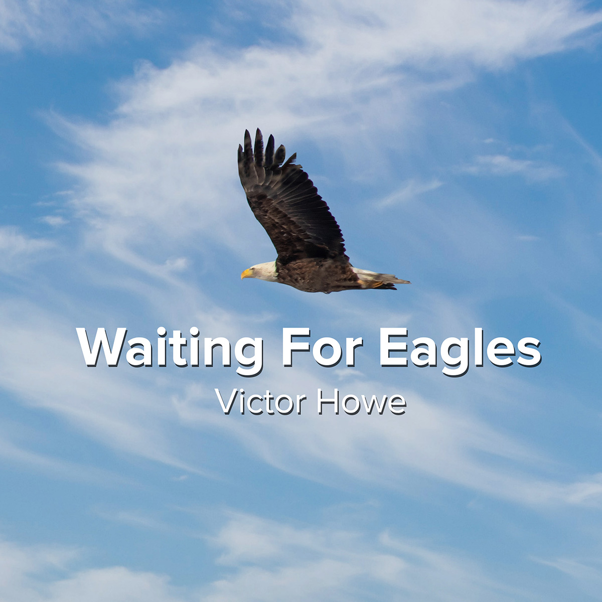 Waiting For Eagles